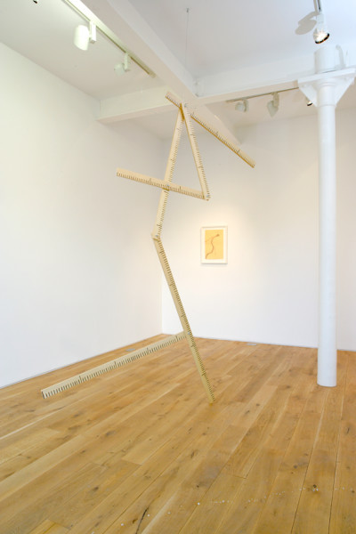 No Title 2008 maple plywood, acrylic paint, varnish, iron wire dimensions variable